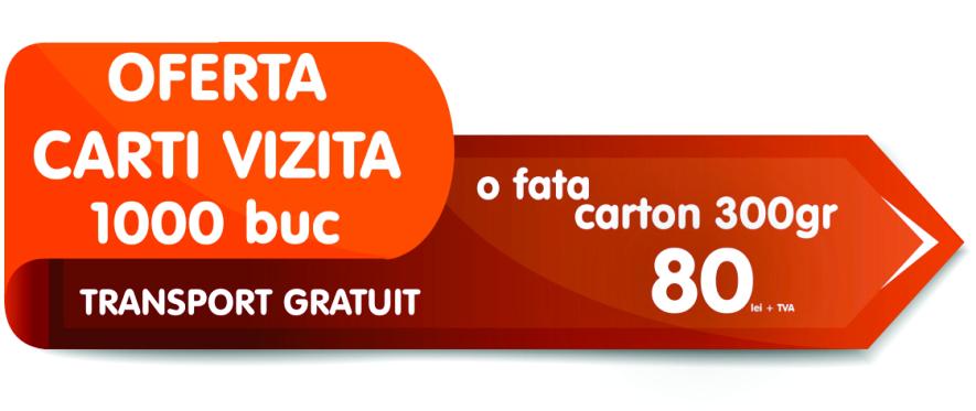 header-site-carti-de-vizita-80-lei